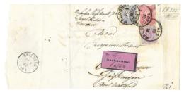 DR Briefausschnitt Nachnahme Mif. Mi.40,42,41 Waldshut 1882 Nach Griessen - Cartas