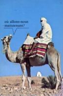 Matmata - Le Targui Et Son Chomeou - Tunisia - Formato Grande Viaggiata – E 13 - Tunisia