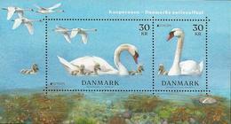 """DINAMARCA /DENMARK /DÄNEMARK /DANMARK -EUROPA 2019 -NATIONAL BIRDS.- """"AVES -BIRDS -VÖGEL-OISEAUX""""- HOJITA BLOQUE - 2019"""
