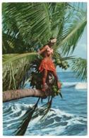 POLYNESIE - TAHITI GIRL / SEINS NUS/BREASTS NUDE - Polinesia Francese