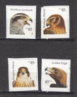 USA, MNG, Oiseau, Bird, Rapace - Eagles & Birds Of Prey