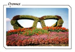 Oyonnax Parterre Fleuri Lunette 2002 CPM Ou CPSM - Oyonnax