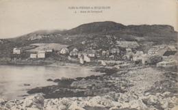 Cpa Miquelon Granville Anse A Savoyard Habitations Pêcheurs De Morues Doris Joli Plan  Pointe  Du Sud De St Pierre - Saint-Pierre-et-Miquelon