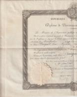 Arch. L.B (1) : Diplome De Pharmacien 2è Cl. 1872 Montpeller Jean Busquet Remoulins Gard - Documents Historiques