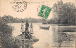 22 429 LES PONTS NEUFS L'Etang Rocher Le Cormoran - Francia