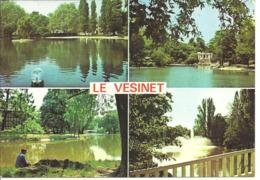 LE VESINET - Vues - Pêcheur - Le Vésinet