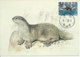 Carte Maximum - Taiwan - Lontre - Chinese Otter - Lutra Lutra Chinensis - 1945-... Repubblica Di Cina