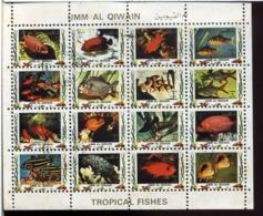 Blocs 16 Timbres Oblitérés (poissons) - Umm Al-Qaiwain