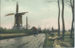 Temse/Tamise,Velle,moulin,molen - Temse