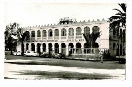 Djibouti - 6 - Les Grands Comptoirs Français & Bar Du Palmier En Zinc (animation, 203 Peugeot)  - Pas Circulé - Djibouti