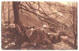 66 - 765. SAINT MARTIN DU CANIGOU - Chemins De L'Abbaye - Other Municipalities