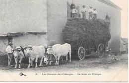 CPA - AGRICULTURE AGRICULTEUR - Travaux Des Champs, Rentrée Des Foins Ou Moisson à La Ferme, Attelage De Boeufs - Paysans