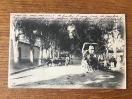 Algérie, CPA Voyagée - Montenotte, Près Ténès (Algérie). - Rue Principale - (B1245) - Algeria