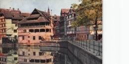 France CPA 67 Strasbourg - Strassburg Straatsburg  Bain Des Plantes   Pflanzbad    L 1498 - Strasbourg