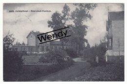Kalmthout (Heuvelsch Paaiken) Uitg. Hoelen N° 4495         1910 - Kalmthout