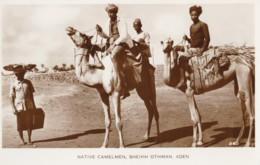 AO30 Native Camelmen, Sheikh Othman, Aden - RPPC - Yemen