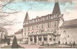 16c) Saint-Trond - VELM - Prpriété De M. Peten - Sint-Truiden