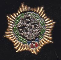 60129-Pin's CMF.troupes De Marine.armée.militaire. .. - Militaria