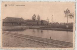 Turnhout - Stedelijk Zwemdok 1947 - Turnhout