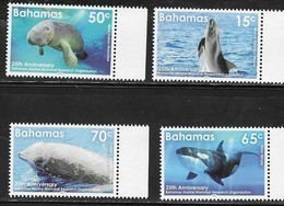 BAHAMAS, 2019, MNH, BAHAMAS MARINE MAMMAL RESEARCH ORGANIZATION, WHALES, DOLPHINS, MANATEES, 4v - Dolphins
