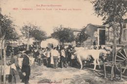 CPA (31) CARAMAN Jour De Foire Le Marché Aux Cochons Porc Pig  Maquignon  (2 Scans) - France