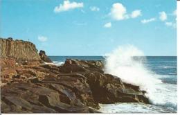 """CP Des Etats Unis """" HIGH SURF ALONG THE NEW ENGLAND COAST - (Années """"70"""") - Etats-Unis"""