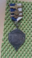 Medaille :Netherlands  - W.S.V Papyrus , Hotel Campman Renkum.  -   Medal - Walking Association - Nederland