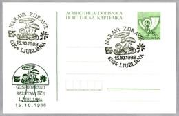 NARAVA ZDRAVJE. SETA - MUSHROOM - CHAMPIGNON. Ljubljana, Yugoslavia, 1988 - Hongos