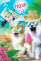 CHATS - CARTE LENTICULAIRE - 2 CHATS AVEC LEUR LUNETTE  - MDR - CPM - VIERGE - - Cats