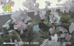 PHONE CARD-NOT PERFECT JAMAICA (E52.3.4 - Giamaica