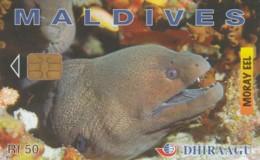 PHONE CARD MALDIVE (E52.6.1 - Maldiven