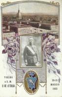 """5445 """" TORINO A S.M. IL RE D'ITALIA-20-21 MAGGIO 1923"""" -CART. POST. OR. NON SPED. - Familles Royales"""