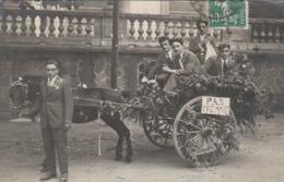 """CPA PHOTO (34) LAMALOU Les BAINS Fête Des Fleurs En 1923 Attelage Cheval Garçons Célibataires """"Pas Femmes"""" (2 Scans) - Lamalou Les Bains"""