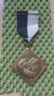 Medaille :Netherlands  -  Medaille - Sinterklaas / Saint Nicholas  Intocht Haaksbergen - Medal - Walking Association - Nederland