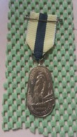 Medaille :Netherlands  -  Bos En Duinentocht (Sperwer) Noordwijkenhout - Medal - Walking Association - Nederland