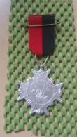 Medaille :Netherlands  - 10 Keer - Rosa Mars Nijmegen - Medal - Walking Association - Nederland