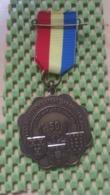 Medaille :Netherlands  - 50 Jaar - 1936 De Vechtkanters Maarsen 1986 - Medal - Walking Association - Nederland