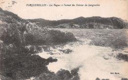 83-PORQUEROLLES-N°T1185-G/0379 - Porquerolles
