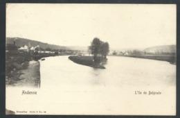 1,1 +++ CPA - ANDENNE - L'Ile De Belgrade - Nels Série 9 N° 54  // - Andenne