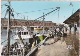 Bv - Cpsm Grand Format LORIENT - Au Port De Pêche, Déchargement De Poissons - Lorient