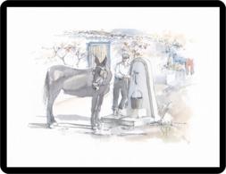 Riproduzione Di Un Acquerello Dare Acqua Agli Animali Reproduction Of Watercolor Give Water Animal Reproduktion Aquarell - Acquarelli