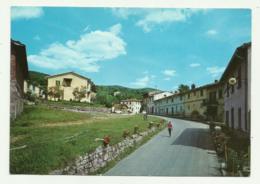 POMINO - CENTRO PANORAMICO - NV FG - Firenze