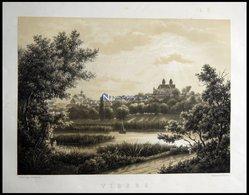VIBORG (Viborg), Gesamtansicht, Lithographie Mit Tonplatte Von J. Hellesen Nach J.P. Müller Bei Emil Baerentzen, 1856 - Lithographies
