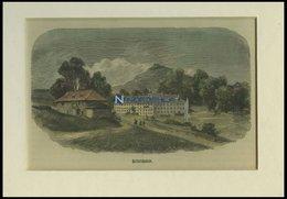 HEINRICHSBAD, Gesamtansicht, Kolorierter Holzstich Um 1880 - Lithographies