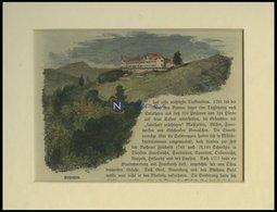 SCHLOSS SOLOTHURN, Kolorierter Holzstich Um 1880 - Lithographies