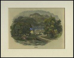 WEISSBAD, Teilansicht, Kolorierter Holzstich Um 1880 - Lithographies