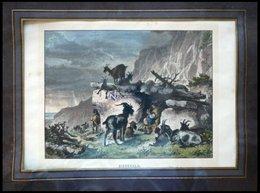 Auf Der Ziegenalm, Kolorierter Holzstich Aus Stieler Um 1880 - Lithographies