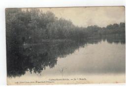Kalmthout  Calmpthout-Heide  -  In 't Bosch 1910 - Kalmthout