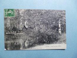 VITTEL  -  88  -  Une Vue Dans La Parc  -  VOSGES - Vittel Contrexeville