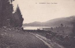 Oyonnax (01) - Lac Genin - Oyonnax